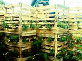 in addition to a great planter pallets made into planters act as a