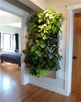 32 indoor vertical garden ideas - Home Tweaks