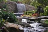 ... of water to this garden. Learn more about backyard waterfall design