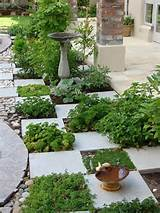 Cute herb garden idea.