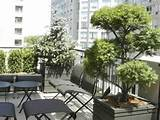 vertical balcony gardens privacy fence ideas with plants