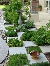 Herb garden | Garden Ideas | Pinterest