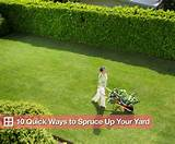 quick easy and inexpensive ways to fix up your yard popsugar home
