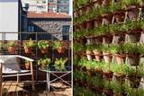 Vertical Home Garden Design Ideas | Beautiful Homes Design