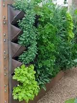 Vegetable Garden Ideas For Backyards And Balconies Vertical