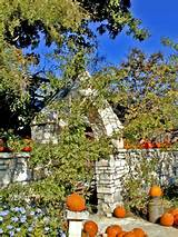 Earthly Gardener--A Texas Cottage Garden Blog: Fall pumpkin fun...