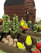 vegetable garden cake cake ideas pinterest