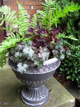 Container Gardening – Great Ideas for Filling those Pots