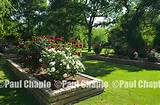 Rose Garden LAWN garden landscape architecture digital photographers ...