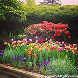 Flower Garden Design Ideas -