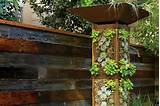 vertical gardening ideas luxury design of vertical vertical garden