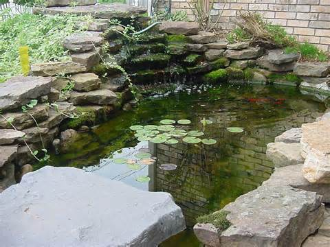 Garden Pond Ideas Pictures | Native Garden Design