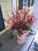 Winter Container Garden Ideas | outdoortheme.com