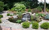 backyard pond on pinterest ponds small garden ponds and rock