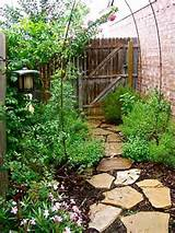 gardening grassless yards backyard outdoors garden backyard ideas