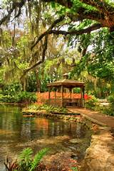 Washington Oaks Garden State Park1 | Disney world | Pinterest