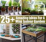 indoor garden diy cozy home world home improvement and garden tips
