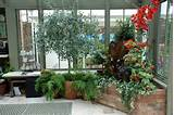 20 Winter Garden Designs Ideas » Photo 16
