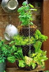 Create a hanging herb garden with tiered kitchen baskets. Image by ...