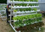 pvc vertical gardening garden ideas pinterest