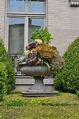 succulent container garden designs lifescape