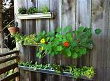 Insanely Creative Vertical Garden Ideas (7)