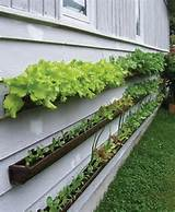 ... garden+planters+-+garden+steps+-+garden+decor+-+gutter+planters+DIY