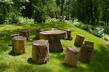 inspired by nature artistic functionality of reclaimed wood stumps