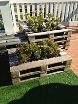 Pallet Gardening | DIY pallets projects | Pinterest