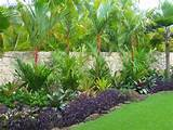 tropical landscape hawaii by loriann gordon landscape architect
