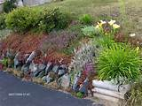 rock can easily become an incredibly attractive rock flower garden