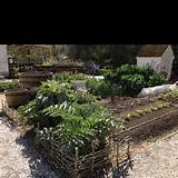 Garden edging | Garden Ideas | Pinterest