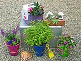 Stunning Low-Budget Container Gardens | Landscaping Ideas and ...