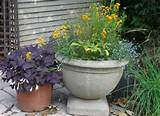 large container herb garden ideas