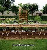 pallet vegetable garden !!! :) | Homie..Gardening/In&OutDoors | Pinte ...