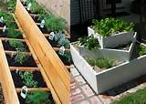 image credit art appetite and herbie herb gardens